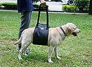Aider Sling pour aider à la mobilité de la marche.Lifting des chiots âgés et jeunes pour la chirurgie des jambes et des articulations faibles Aidez votre chien aîné à marcher et à grimper s'il souffre d'arthrite, de myélopathie dégénérative ou d'autr...