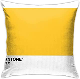 Cuscini Pantone.Amazon It Pantone Copricuscini E Federe Cuscini Decorativi E