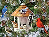 5D DIY diamante pintura punto de cruz pájaro diamante bordado invierno mosaico...