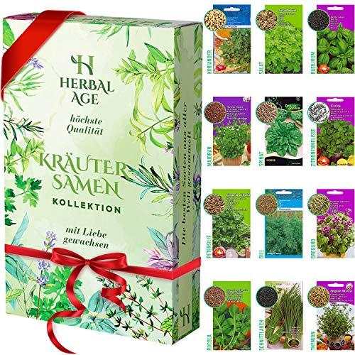 Züchte deine eigenen Kräuter - 12 Kräutersorten, 8700 Kräutersamen - Kräuterpflanzenset für Frauen, Kinder, Anfänger, Geschenke für Gärtner - Kräuter für den Pflanzenanbau im Innenbereich