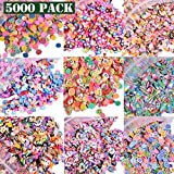 EHOPE 5000 PCS 3D Polymer Slices DIY Nail Art Slime Supplies Charms Slime Making Kit Decoration Arts Crafts(Fruit,Smiling face,Loving Heart,Plum Blossom,Pentagram,Cake,Cartoon,Animal,Feather)
