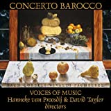 Pachelbel Canon in D Major - Johann Pachelbel - Canon and Gigue for Three Violins and Basso Continuo in D major