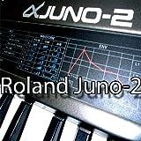 ROLAND Juno-2 enorme fábrica original y nueva biblioteca de sonido creada y editores en CD o...