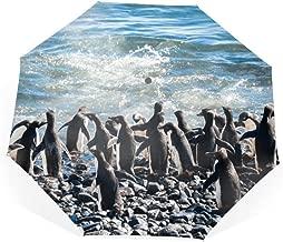 Travel Umbrella, Windproof Folding Umbrella, Auto Open Close and Ergonomic Handle (Antarctic Penguins)