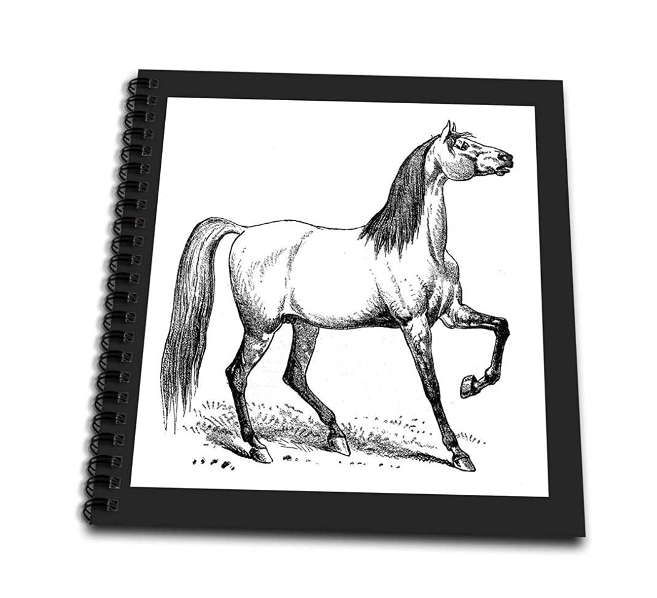 3dRose db_46521_1 Vintage Horse Sketch-Drawing Book, 8 by 8-Inch