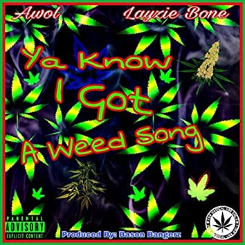 Ya Know I Got a Weed Song