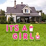 IT'S A Girl Pink Yard Signs with Stakes – Includes Big Letters,Baby Bottle,Baby Pacifier Signs–Weather-Resistant Signs and Stakes-Welcome Home Baby Lawn Sign-Gender Reveal Baby Shower-10PCS