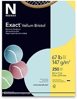 Wausau Vellum Bristol Cardstock, 67 lb, 8.5 x 11 Inches, Pastel Blue, 250 Sheets (81328)