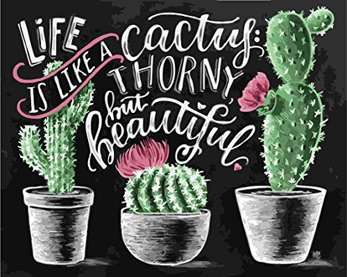 """CaptainCrafts New DIY Paint by Numbers 16x20"""" for Adults Beginner Kit, Kids Linen Canvas - Chalkboard Drawing Three Basin Cactus (Frameless)"""