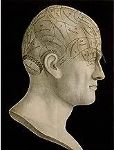 Wee Blue Coo Vintage Science Phrenology Head Spurzheim Organ Brain Unframed Wall Art Print Poster Home Decor Premium