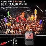 Zoom IMG-2 termometro barbecue gifort digitale per