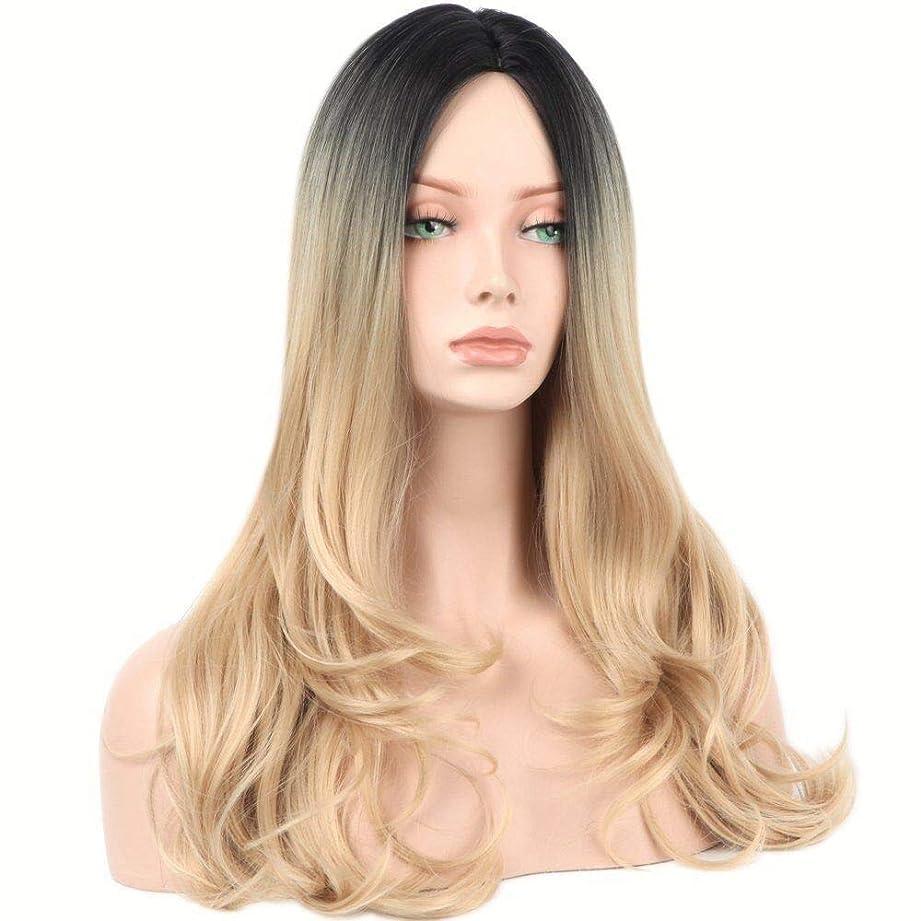 悪意アレンジポータルYrattary 人工毛オンブルブロンドロングカーリーヘアコスプレウィッグ (色 : Blonde)