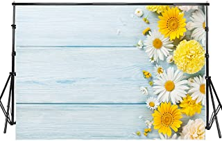 daisy background pictures