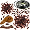 Fake Poop Realistic Rubber Snakes 70Pieces Fake Cockroach Roach Novelty Toys for April Fools' Day Halloween Party Favors and Decorations Props Boys Girls Gifts