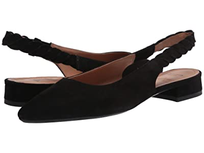 Aquatalia Perlita (Black) Women