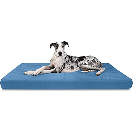 Amazon Com K9 Ballistics Tough Orthopedic Dog Bed Xx Large Nearly Indestructible Chew Proof Washable Ortho Pillow For Chewing Puppy For Xx Large Dogs 68 X40 Blue Pet Beds Kitchen