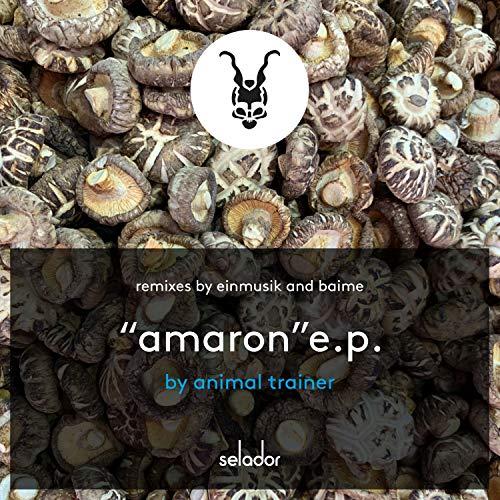 Amaron (Einmusik Remix)