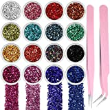 16 Colors Crushed Glass Irregular Metallic Mini Chips 0.5-2.5 mm Sprinkles Chunky Glitter with 2 Pieces Tweezers for Nail Arts Craft DIY Resin Mold Jewelry Making Vase Filler Decoration Supplies