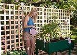 Ideale per coltivare le tue verdure, la frutta o le piante aromatiche. Facile montaggio e manutenzione Altezza comoda per lavorare Diviso in 3 scompartimenti Prodotto fabbricato in Francia