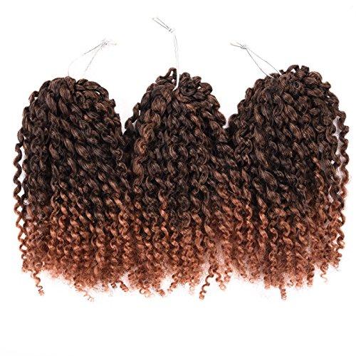 Silike 8 Mali Bob Braiding Hair Ombre Jerry Curl (3 Bundles/pack) Marlybob Crochet Braiding Hair Afro Kinky Curl Braids Hair Extension(T 1B/30)