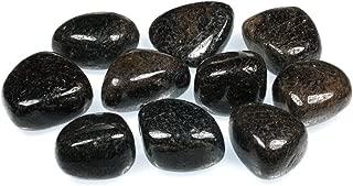 Red Garnet Tumble Stone (20-25mm) - 5 Pack