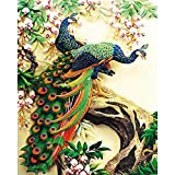 FBDBGRF Pintar por Número Pavo Real En El Árbol para Adultos Y Niños DIY Kit De Regalo De Pintura Al Óleo con Juego De Pintura Digital para Decoración del Hogar Lienzos para Pintar