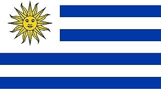 Gran Bandera de Uruguay 150 x 90 cm Durobol Flag