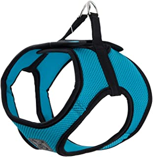 RC Pet Products Cirque Soft Walking Step in Dog Harness, XX-Large, Teal