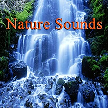 Nature Sounds