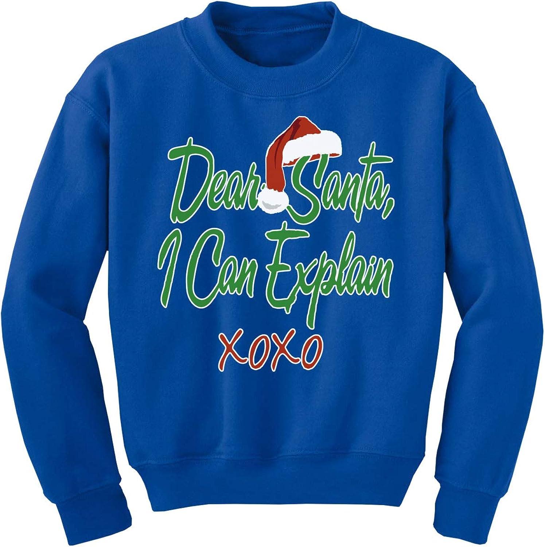 Awkward Styles Ugly Xmas Sweater for Girls Boys Kids Youth Dear Santa I Can Explain Christmas Sweatshirt