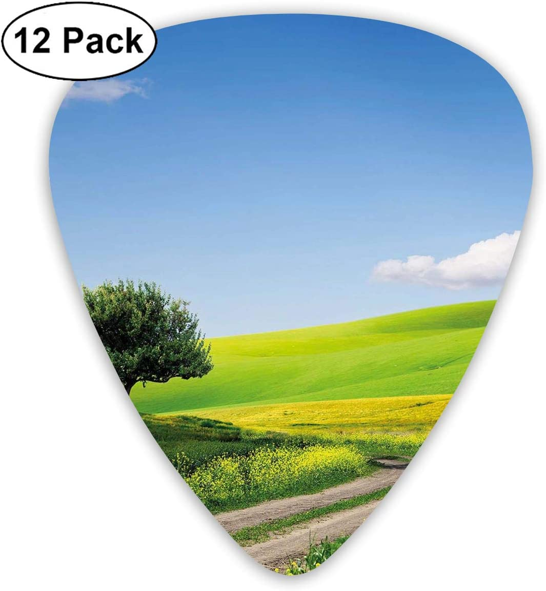 Guitar Picks12pcs Plectrum (0.46mm-0.96mm), Rural Country Scenery With Floral Grass Field Tree Idyllic Landscape,For Your Guitar or Ukulele