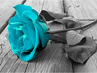 5D DIY Diamond Painting Blue Rose by Number Kits, Full Drill Cross Stitch Crystal Rhinestone Embroidery Pictures Arts Craft for Home Wall Decor Gift (Blue Rose)