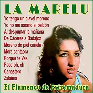 El Flamenco de Extremadura