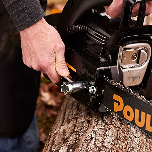 Poulan Pro PR4218, 18 in. 42cc 2-Cycle Gas Chainsaw, Case Included