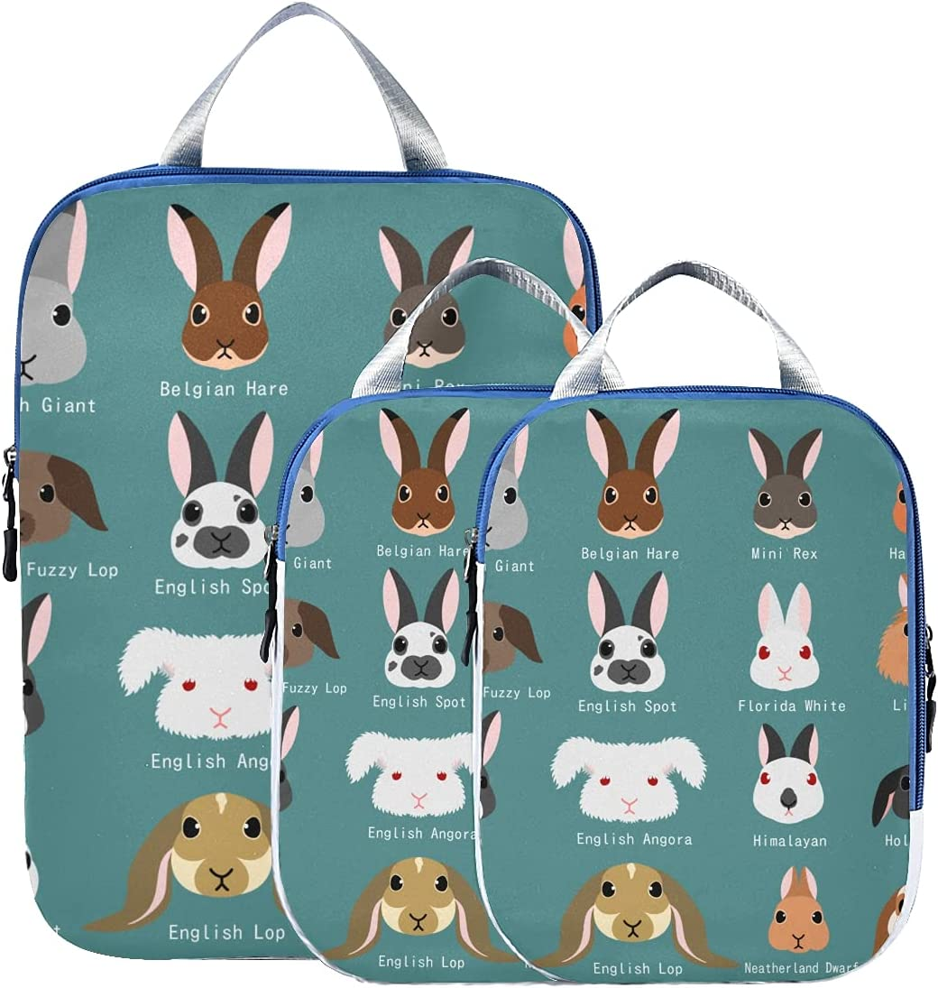 Packing Cubes Travel Set Cute All stores are sold Variations Organiz Rabbit Coloring Direct store