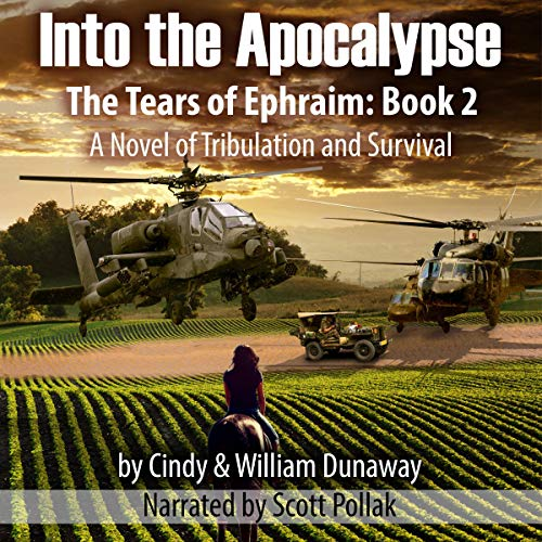 Into the Apocalypse: A Novel of Tribulation and Survival Audiobook By Cindy Dunaway, William Dunaway cover art