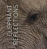 Image of Elephant Reflections