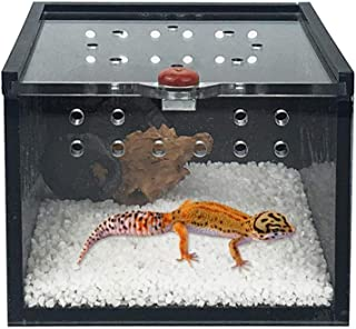 POP-STYLE Insect Terrarium Feeding Box Breeding case for Spider Lizard Cricket Pet Breeding Keeper Black Acrylic