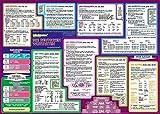 mindmemo Lernposter - Die deutschen Wortarten lernen Grammatik verständlich erklärt Lernhilfe kompakt Zusammenfassung Poster DIN A2 42x59 cm ... Lernhilfe -...