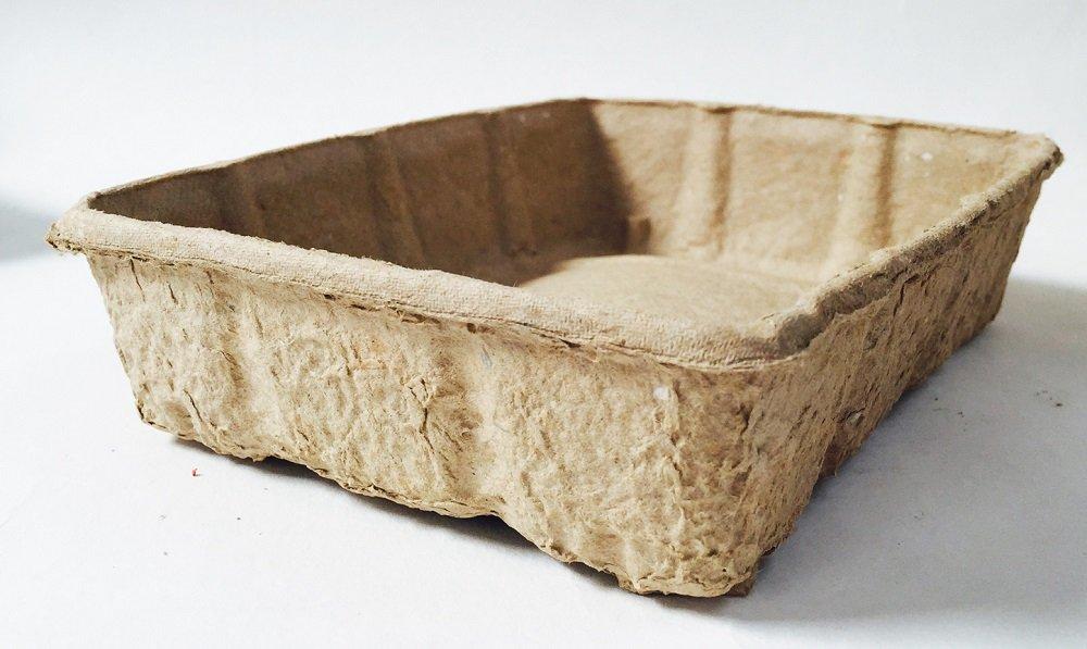 Semilla bandejas biodegradables de nutley, marrón: Amazon.es: Jardín