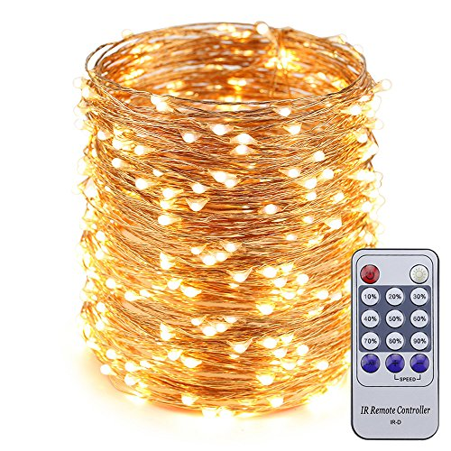 ER CHEN 165ft Led String Lights,500 Led Starry Lights on 50M Copper Wire String Lights + 12V DC Power Adapter + Remote Control(Warm White)