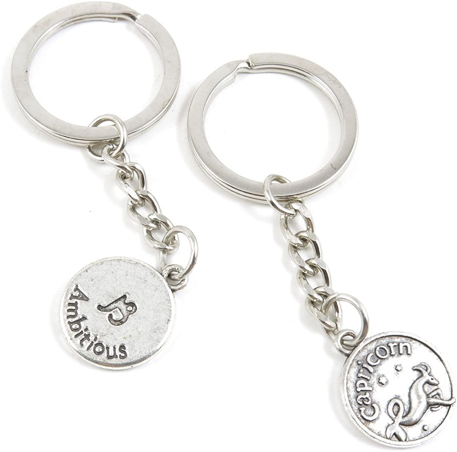 100 Pieces Keychain Keyring Door Car Key Chain Ring Tag Charms Bulk Supply Jewelry Making Clasp Findings O7JW4U Capricorn