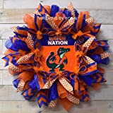 Florida Sports Wreaths, Florida College Wreaths, Gator Nation (2239)