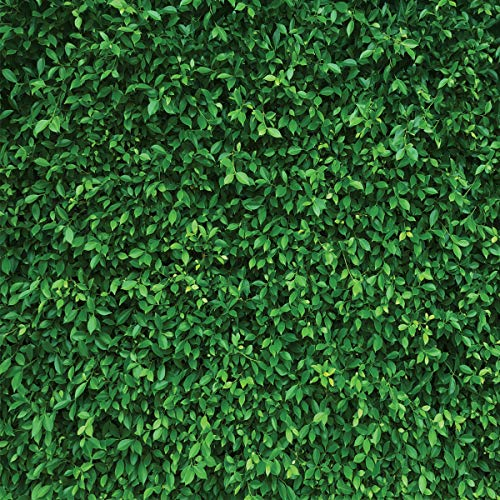 LYWYGG 8x8FT Green Leaves Photography Backdrops Mmicrofiber Nature Backdrop Birthday Background for Birthday Party Seamless Photo Booth Prop Backdrop CP-87-0808