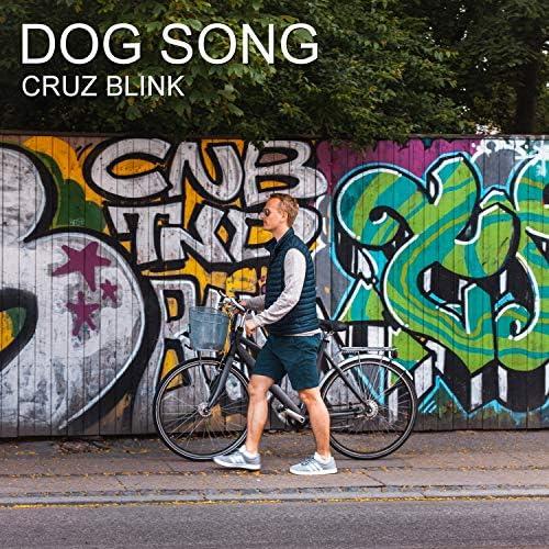 Cruz Blink
