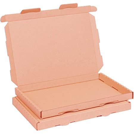Großbriefkarton 230 x 160 x 20 mm DIN A5 weiß Warensendung Faltkarton 50 St