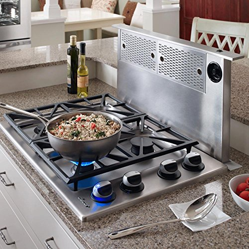 Renaissance Epicure ERV3015 30 Downdraft Range Hood With Easy-To-Clean Filters Infinite Blower Speed...