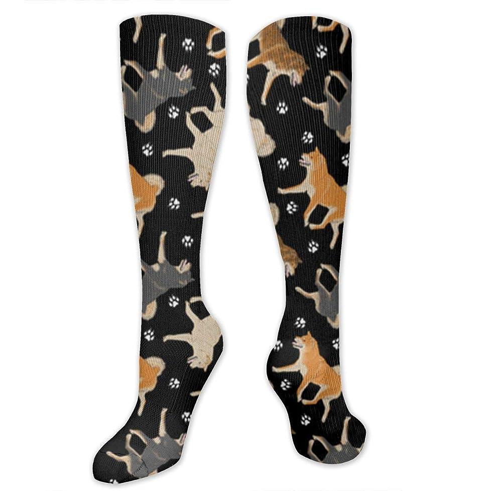 ガラガラ滑りやすいペースト靴下,ストッキング,野生のジョーカー,実際,秋の本質,冬必須,サマーウェア&RBXAA Shiba Inu Fabric in Black Socks Women's Winter Cotton Long Tube Socks Cotton Solid & Patterned Dress Socks