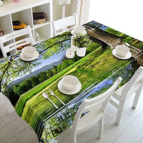XXDD Mantel 3D Pastoral Verde Bosque Paisaje patrón Mesa de Comedor Lavable Mantel Rectangular A4 140x140cm