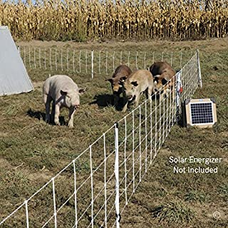 Best electric pig fence Reviews